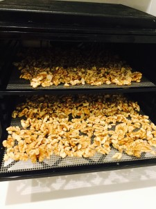 Walnuts in dehydrator